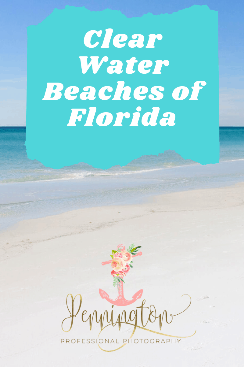 The Gulf Coast Of Florida Is Home To Gorgeous Clear Water Beaches With Pillowy White Sand These 5 Beaches Boast The Clear Beaches Florida Beaches Clear Water