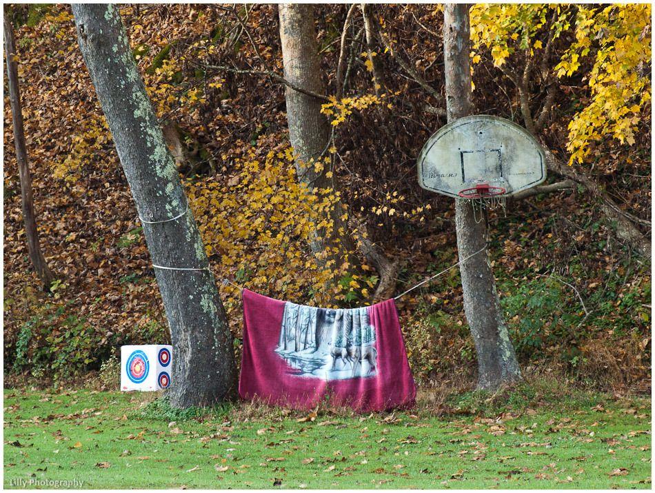 hoop dreams hoop dreams and basketball goals diy basketball hoop backboard in a tree way cool basketball hoophoop dreams
