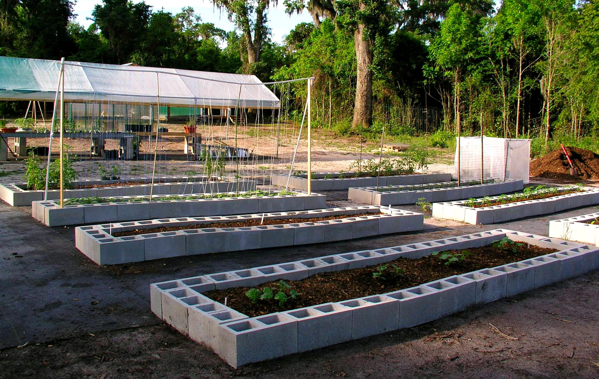 Concrete Block Raised Beds Urban Homesteading