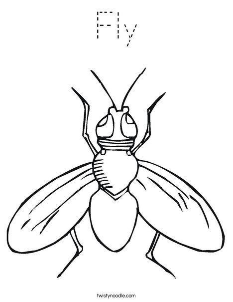 Fly Coloring Page Animal Coloring Pages Coloring Pages Insect