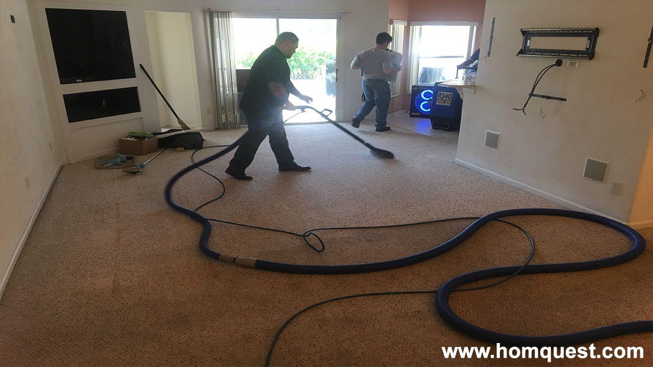 Cleaning And Deodorizing Carpet deodorizer, Washing