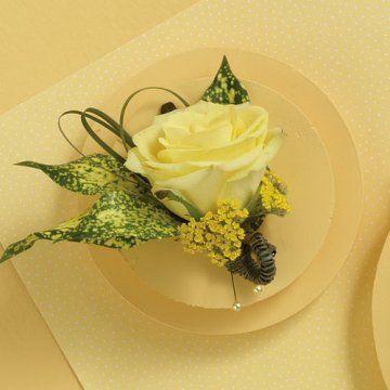 pale yellow rose buttonhole - Google Search