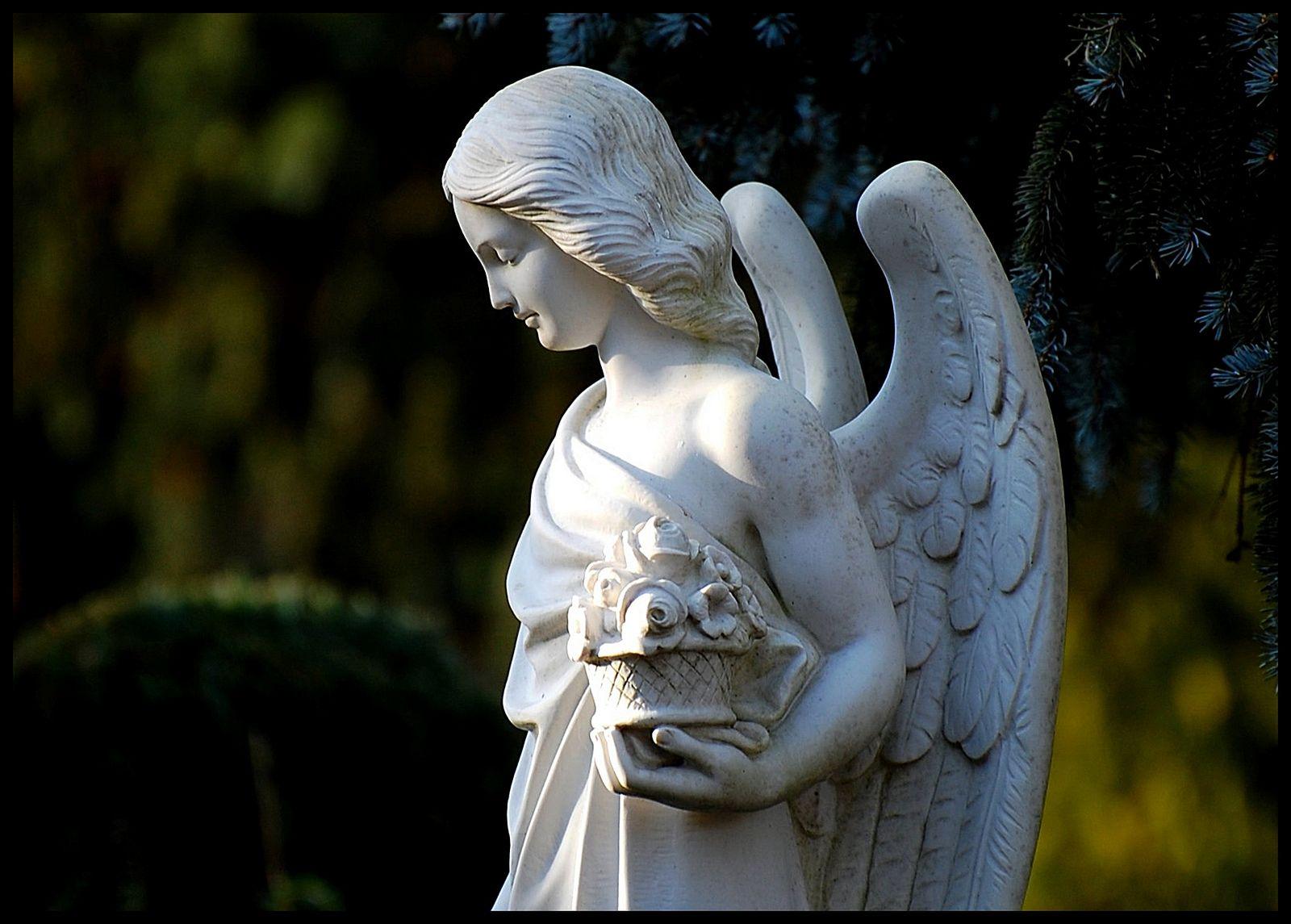 https://flic.kr/p/e6hKVx   Engel * Angel * Cherubin 11   Friedhof Mannheim