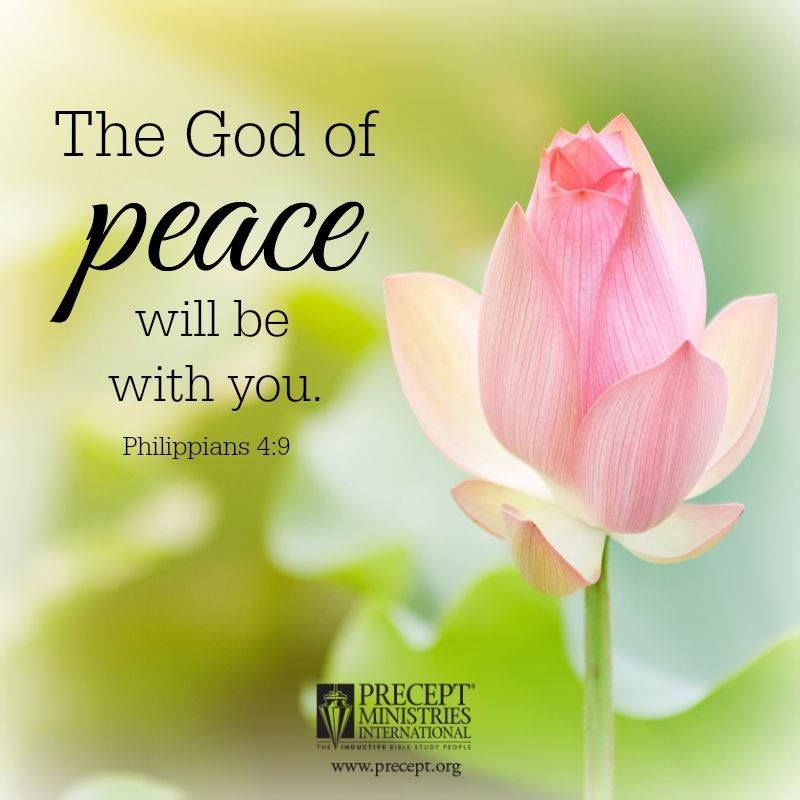 PHILIPPIANS 4:9 - Those things, which ye have both learned, and received and seen in me, do : and the God of Peace shall be with you. KJV