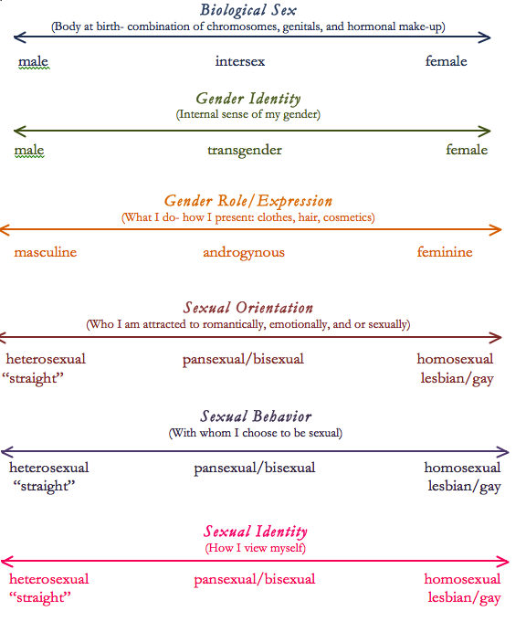 Sexual orientation spectrum