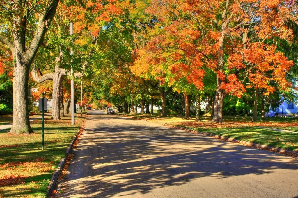 Illinois - Autumn in the United States Best of Web Shrine