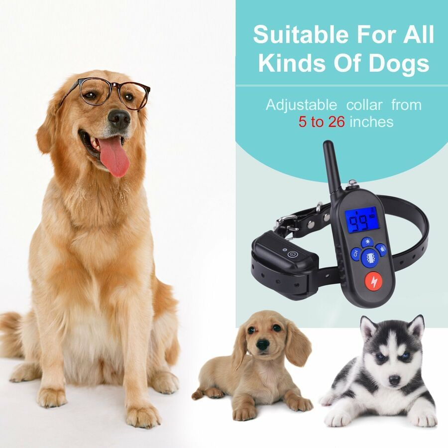 Pet Dog Training Shock E Collar Waterproof Rechargeable Remote