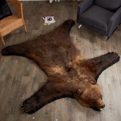 6 Foot 7 Inch Grizzly Bear Rug Leh90071101 Bear Skin Rug Bear Rug Grizzly Bear