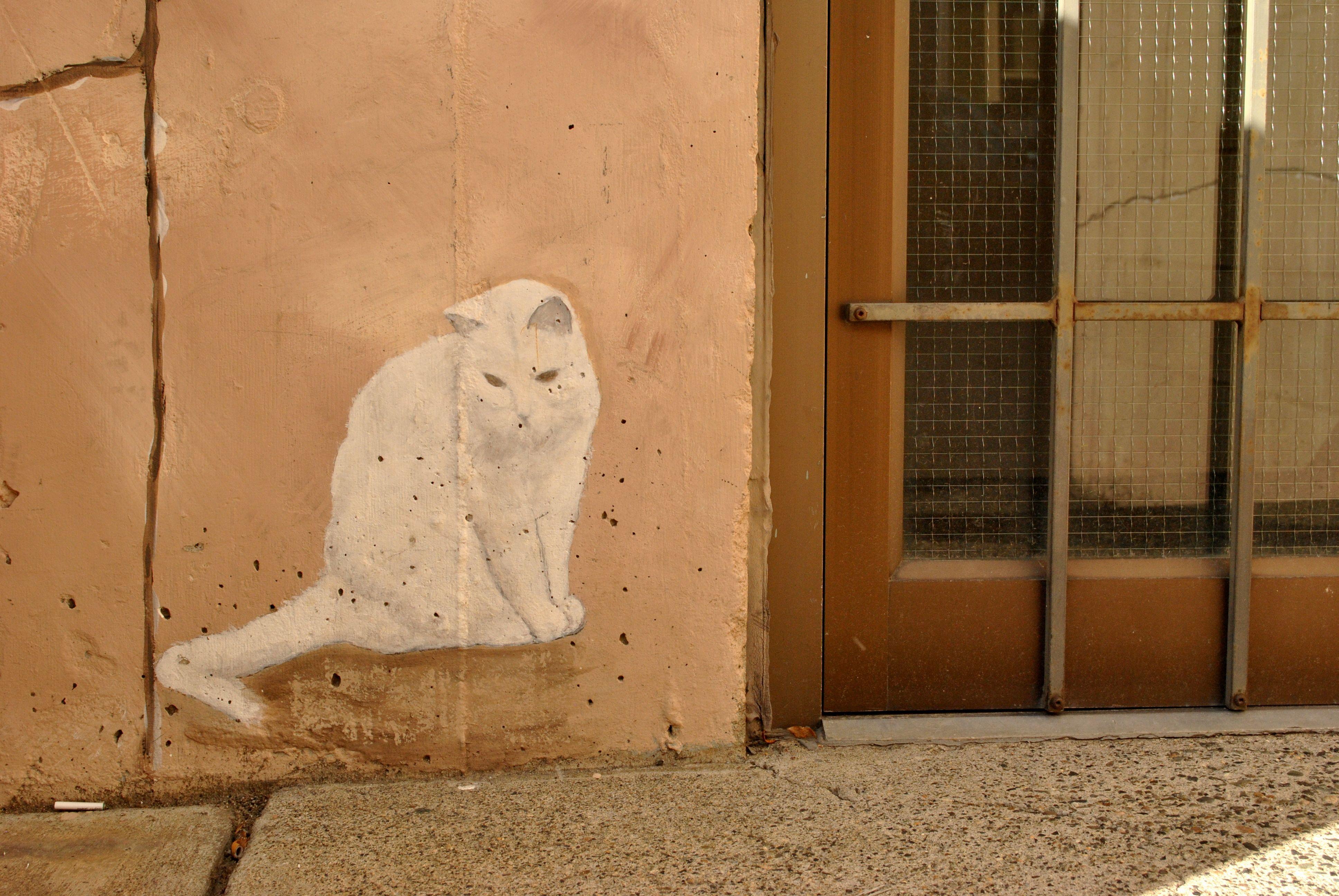 Alley cat. Kamloops, BC