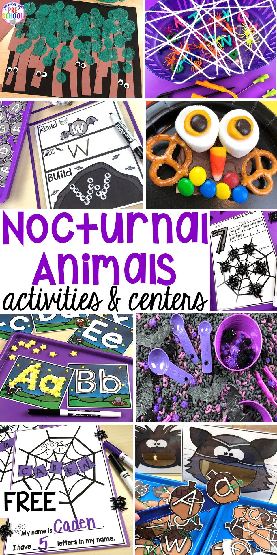 Nocturnal Animals Activities and Centers for Little