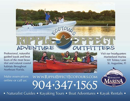 Ripple Effect Ecotours contact info