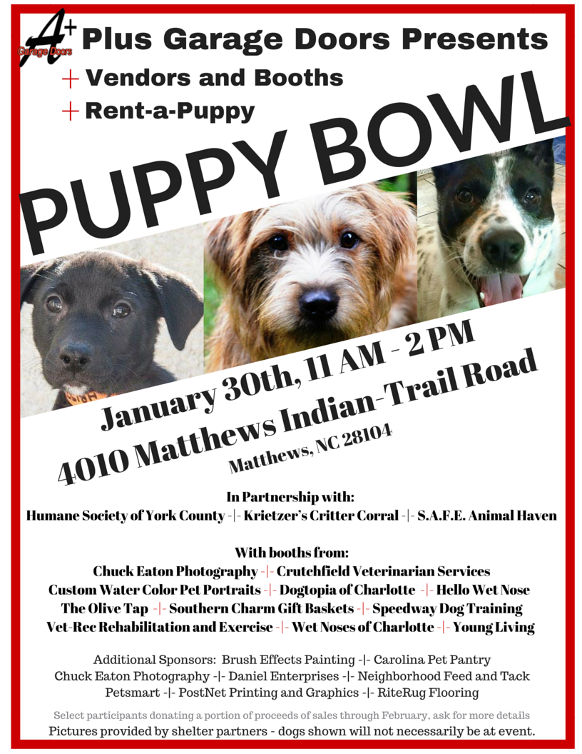 Very Excited To Be Part Of An Event That Brings Together So Many Local Businesses And Members Of The Community To Help F Puppy Bowls Puppies Custom Woodworking