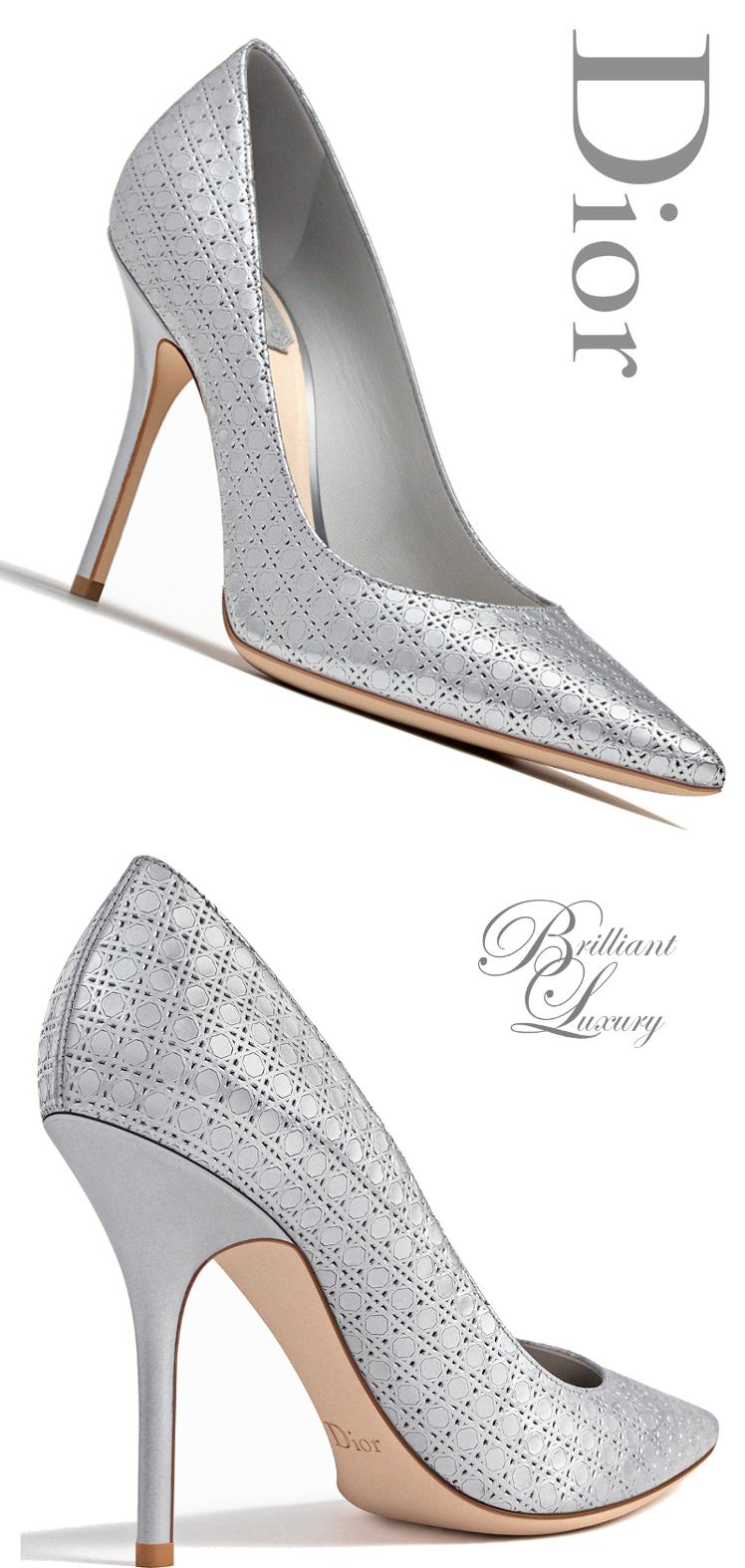 Brilliant Luxury   Dior Pump Fall 2015-16   S H O E S.   Pinterest ... 8f58d1f324a
