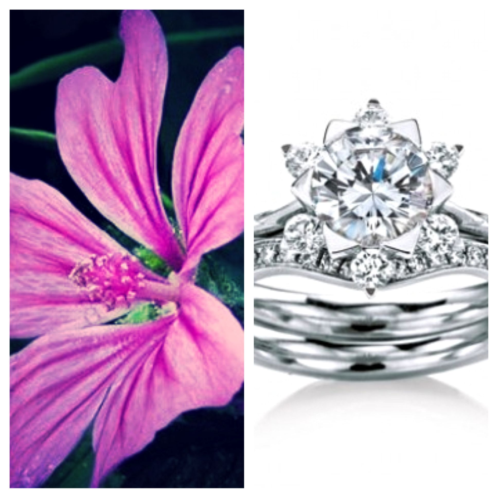 MaeVona MallowSet-Round brilliant-cut engagement ring named after ...