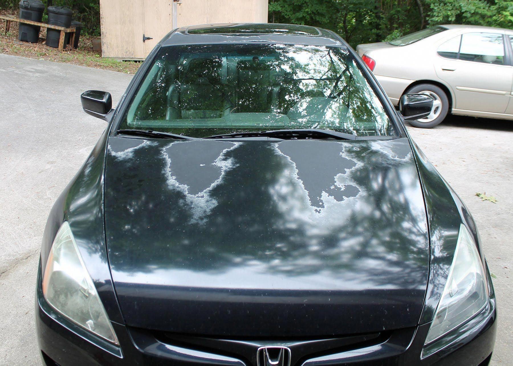 How to fix peeling Clear Coat on a vehicle | Car paint repair, Car, Car  hacks