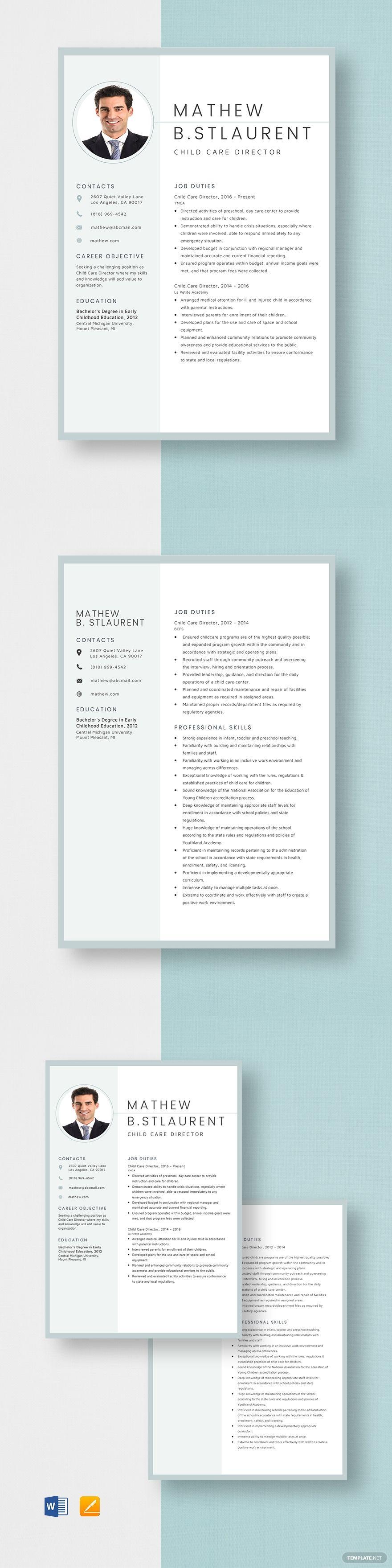 Child care director resume template in 2020 nursing
