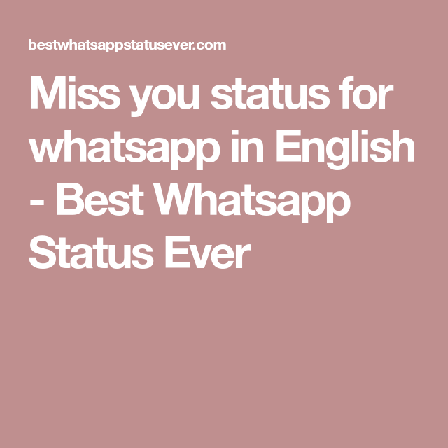 Here In Best Whatsapp Status Ever You Can Get All The Latest Miss