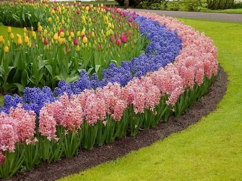 Jardines PAISAJES y JARDINES Pinterest - paisajes jardines