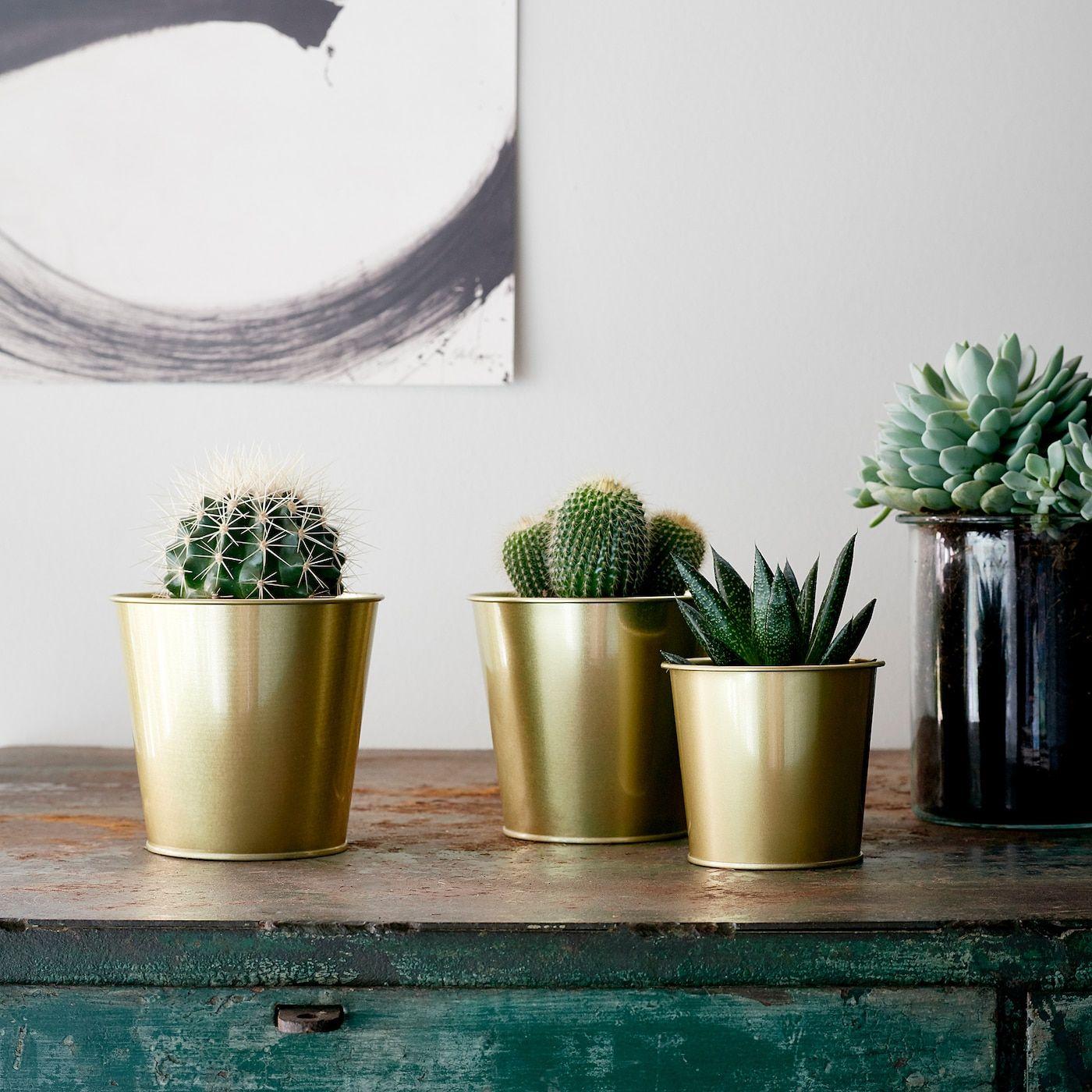 Daidai Ubertopf Messingfarben Ikea Osterreich Flower Pot Design Indoor Plant Pots Flower Pots