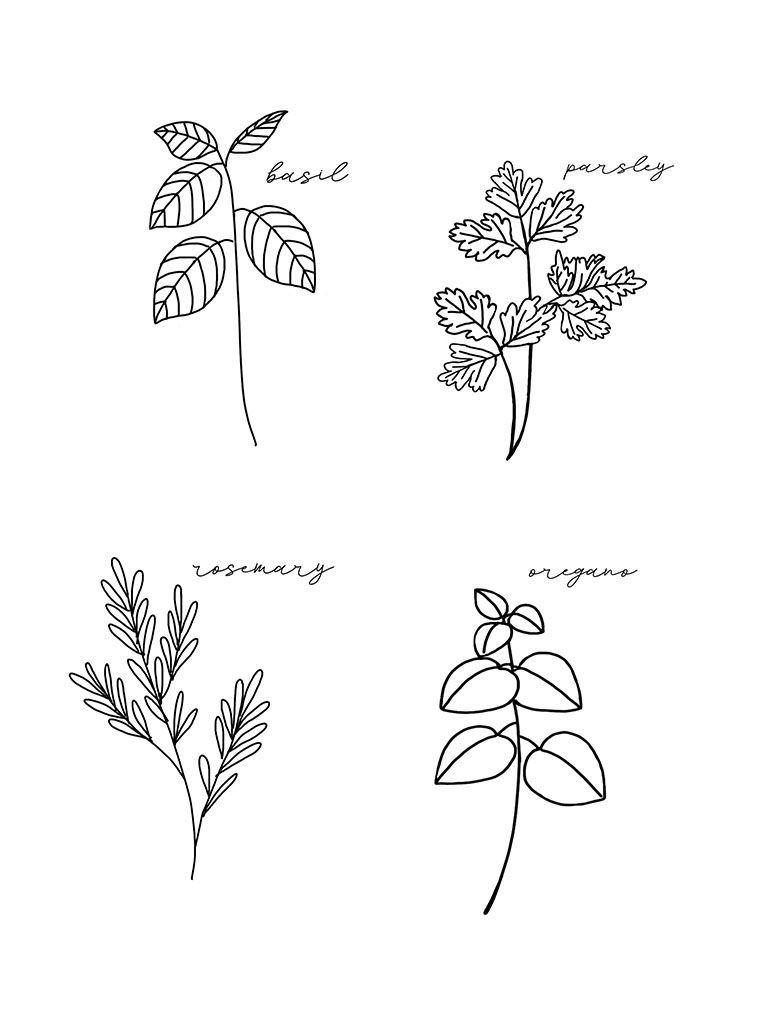 Herb Embroidery Patterns Free Printable Herb Embroidery Patterns Free Printable Embroidery