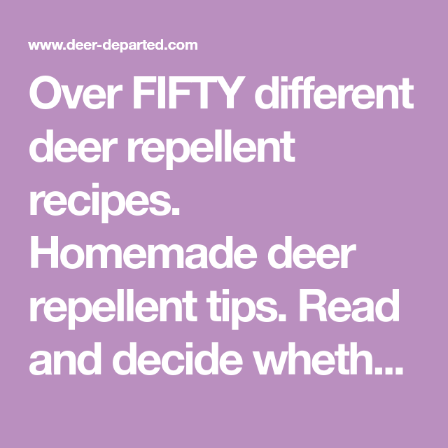 Over FIFTY different deer repellent recipes. Homemade deer repellent tips. Read and decide whether to make your own or buy.