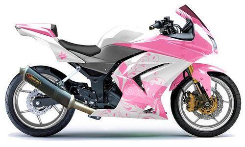Kawasaki Ninja 250R Glorious In Pink