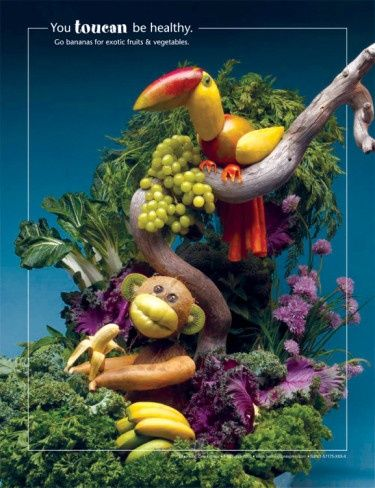 You Toucan Be Healthy Foodscapes Print at Al You Toucan Be Healthy Foodscapes Print at Al