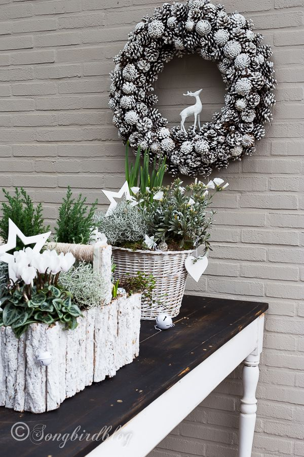My outside Christmas table decorations - Songbird