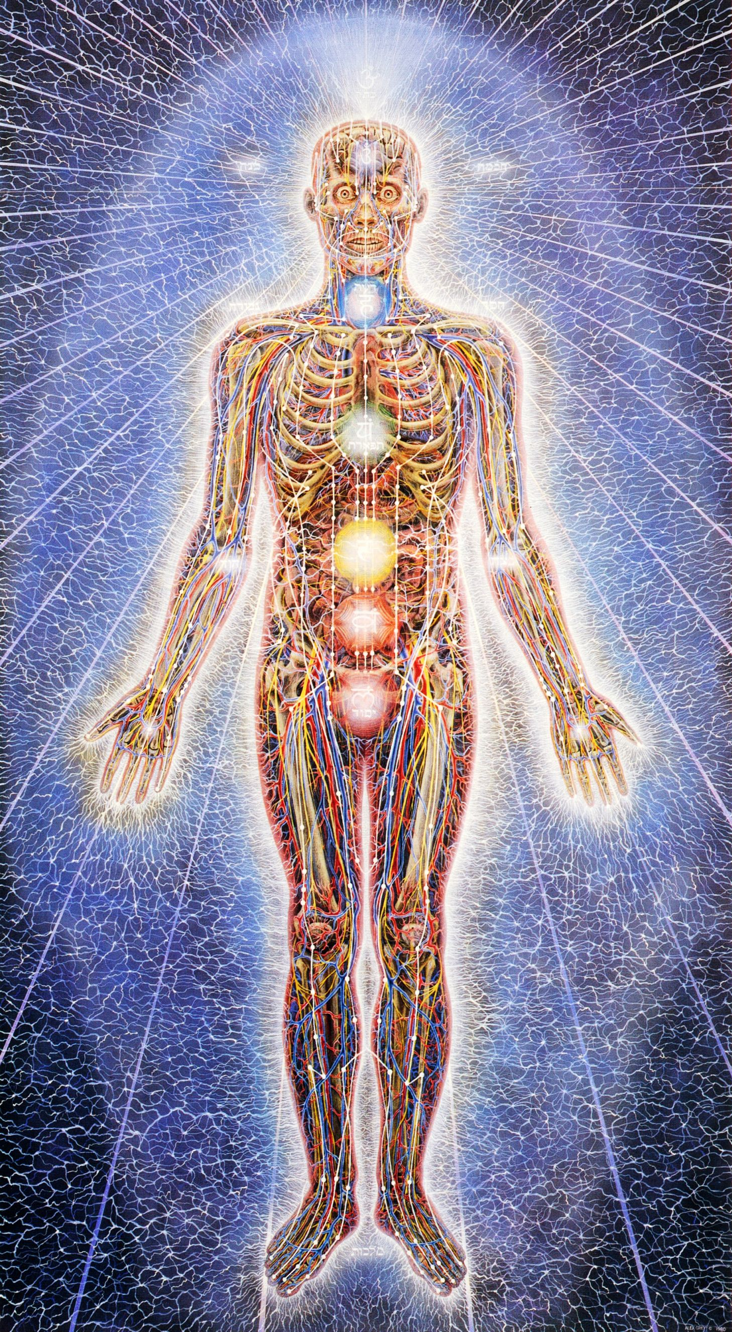 Psychic Energy System | Alex Grey 1980