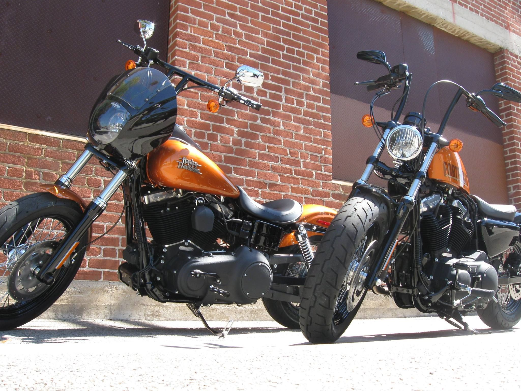 2015 forty eight sportster right fxdb street bob dyna left in the new amber whiskey color scheme