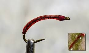 Photo of Image result for trout stillwater flies