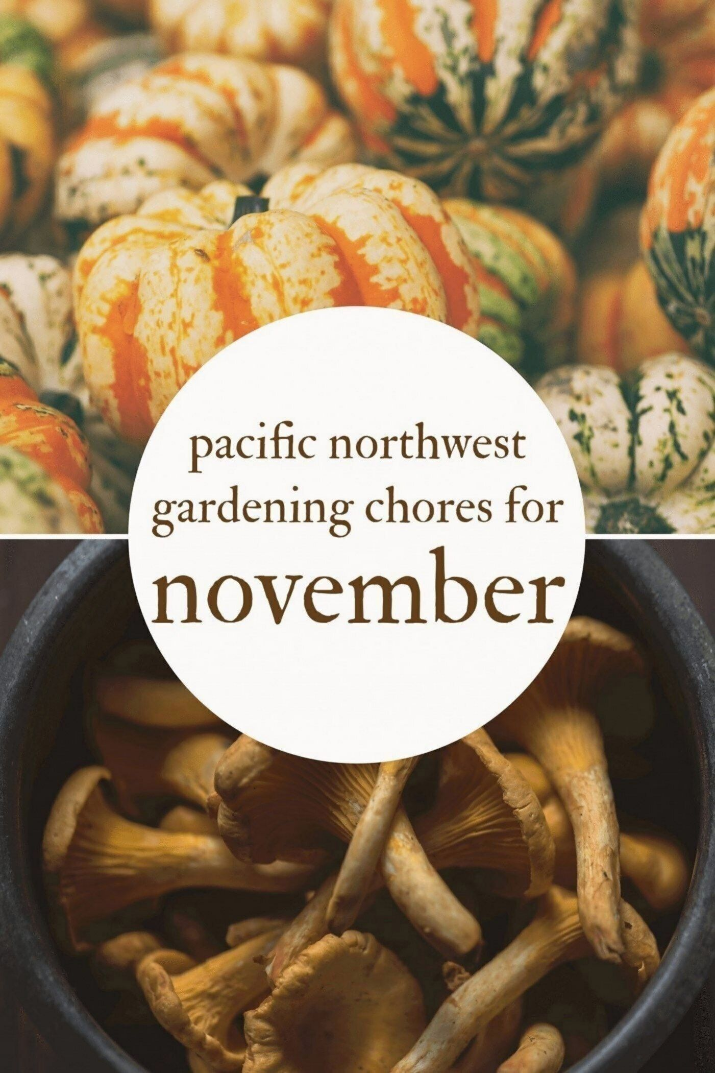 November gardening chores for the pacific northwest.