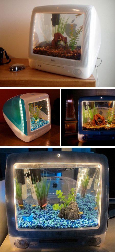 #aquariums #imaciMac Aquariums