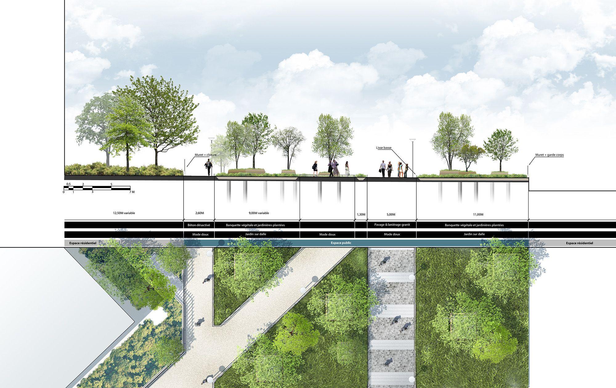 Plan coupe sur l 39 espace public projet pinterest eco for Design paysage