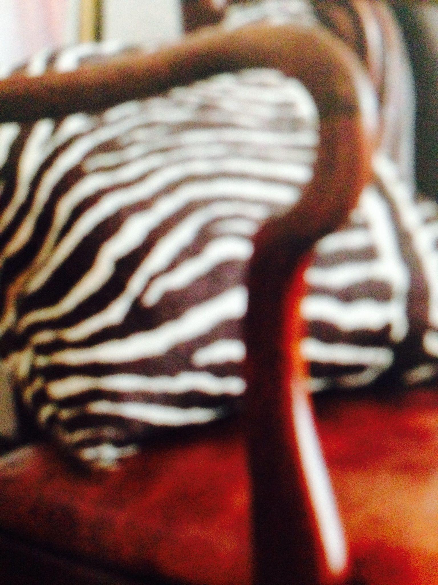 Zebra tyget