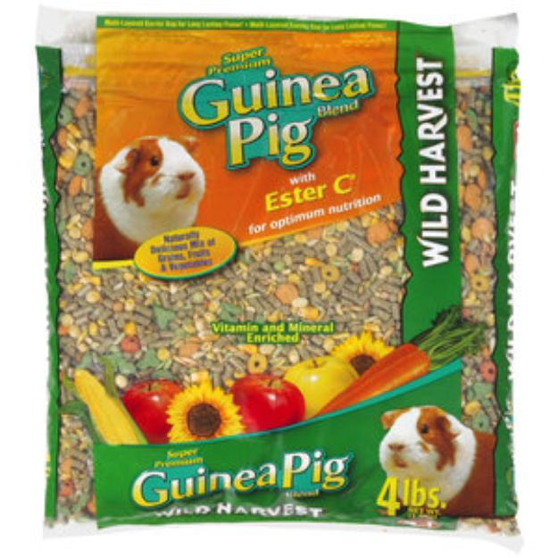 guinea pig food walmart