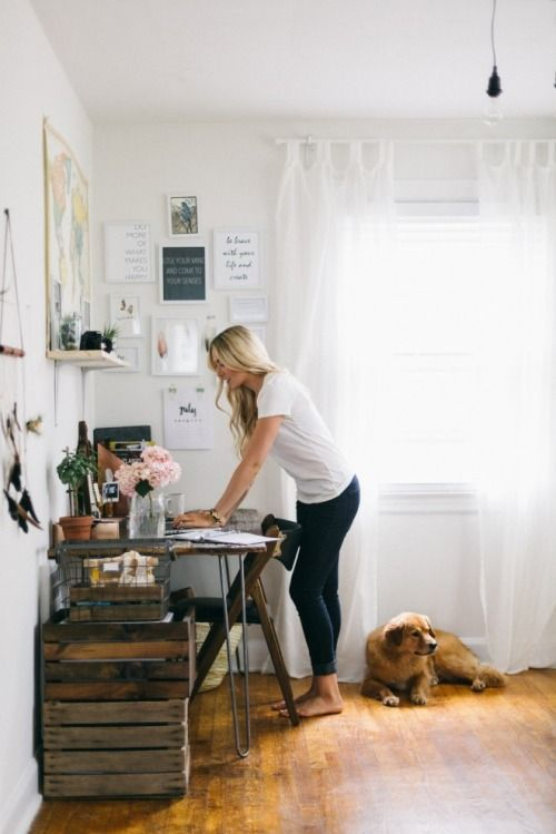 studio and dog