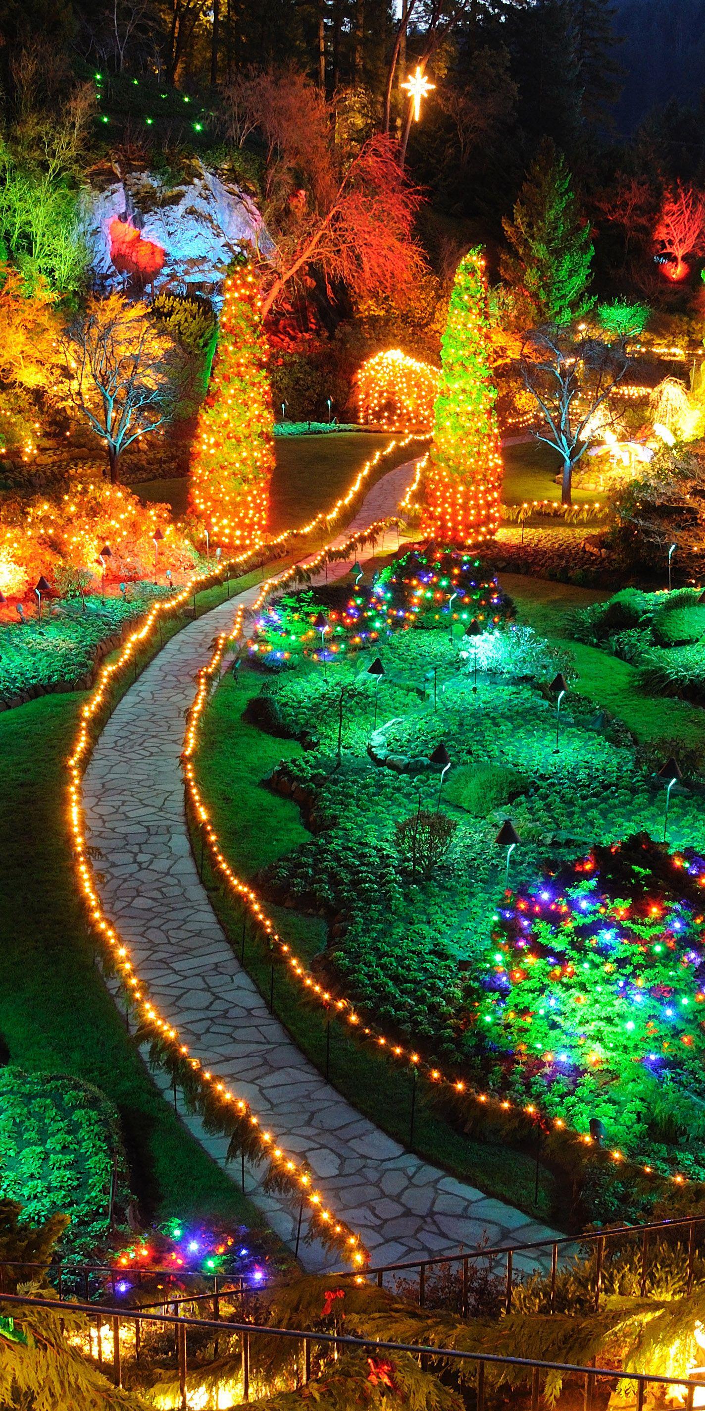 8bdb633b4dd56820fffee4483fd0e257 - The Butchart Gardens Christmas Lights Tour