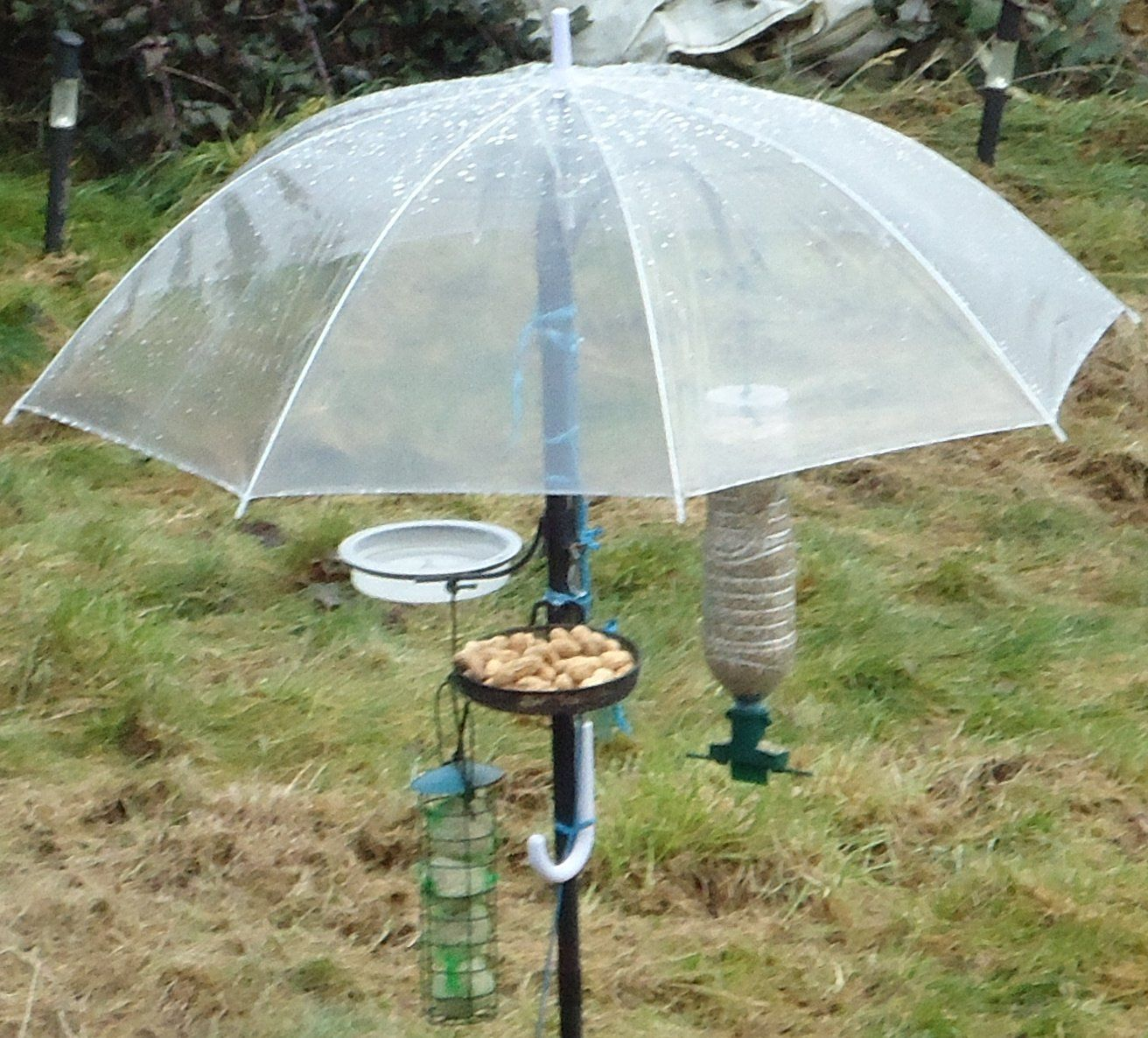Patio Umbrella Flying Away: Clever Umbrella Bird Feeder: This Keeps Seed Dry, Protects