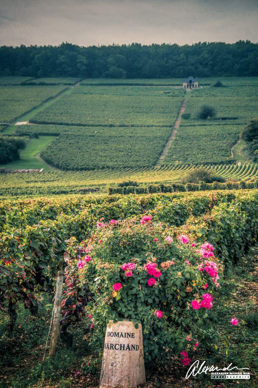 Photo Région Bourgogne, France par Alex Hill 500px