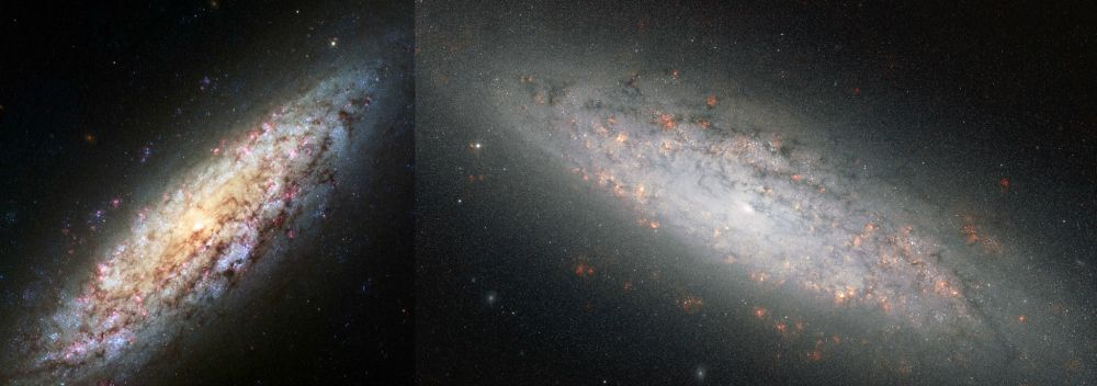 Hubble has taken a new image of the Lost in Space galaxy.