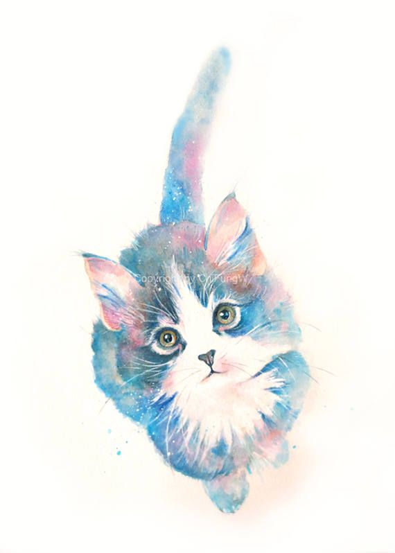 Kitten Cat Kitten Print Animal Print Giclee Art Cat Art