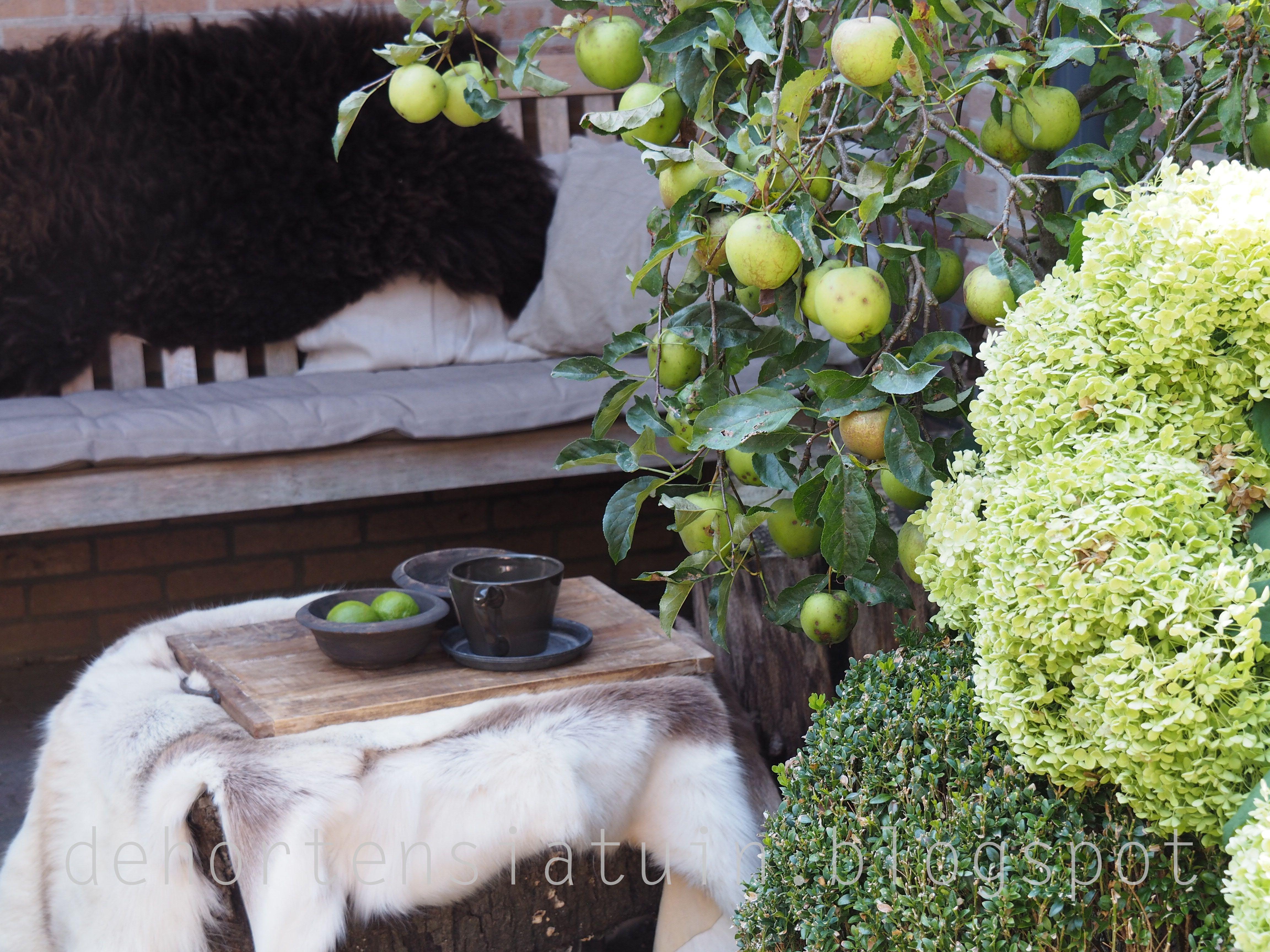 najaar, tuin, schapenvacht, rendiervacht, dehortensiatuin.blogspot