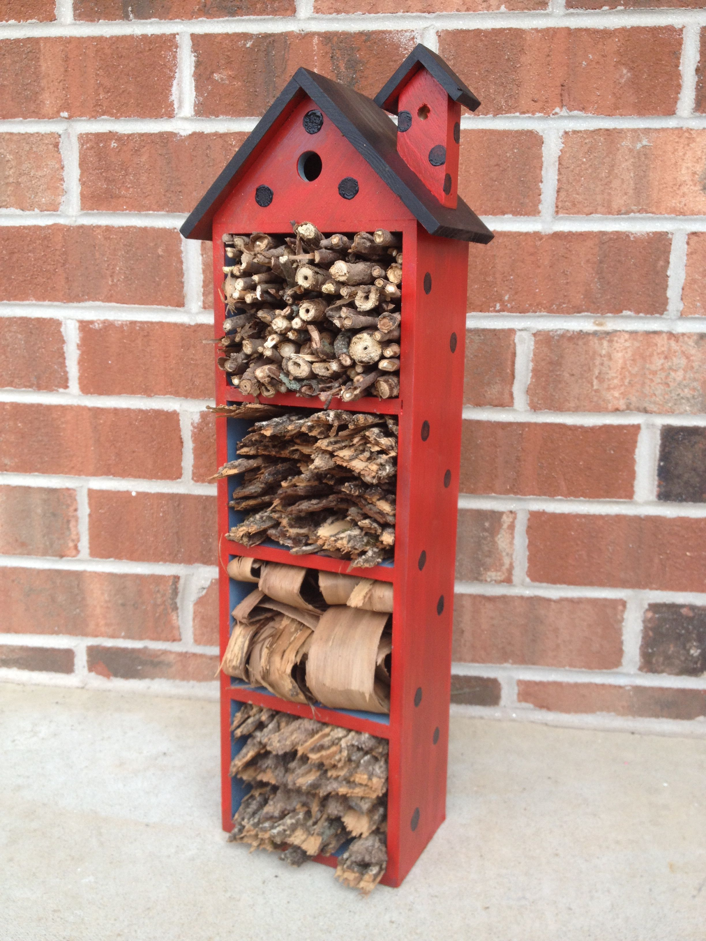 """Ladybug house that I made for our garden.  The """"house"""" is actually a mug holder that I found at an antique shop. I painted it then filled the compartments with sticks and bark.....ladybugs love to make these tight spaces their homes."""