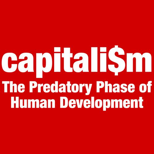 Image result for anti capitalist