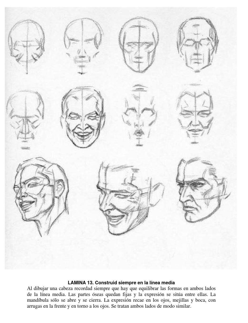 Loomis dibujo de cabeza y manos version en espa±ol