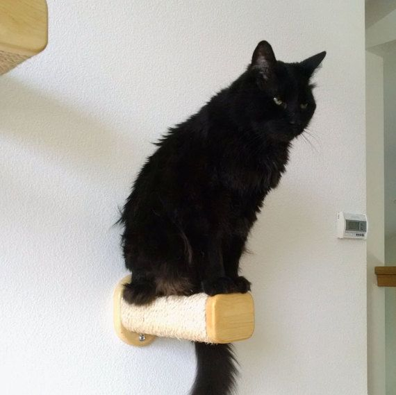 1 Wall mounted Sisal Step/Post (For a set of 3 for $74.95 go to other my other listings)  Unique option for cats to climb on walls to bridge a gap between two spaces  or use them for stairs to their cat towers or perches. Made of natural Sisal Rope  and solid wood. Steps have been tested to 100 pounds! Easily attaches to a wall  stud with 2 screws. Measures 4.25 wide by 11.5 long