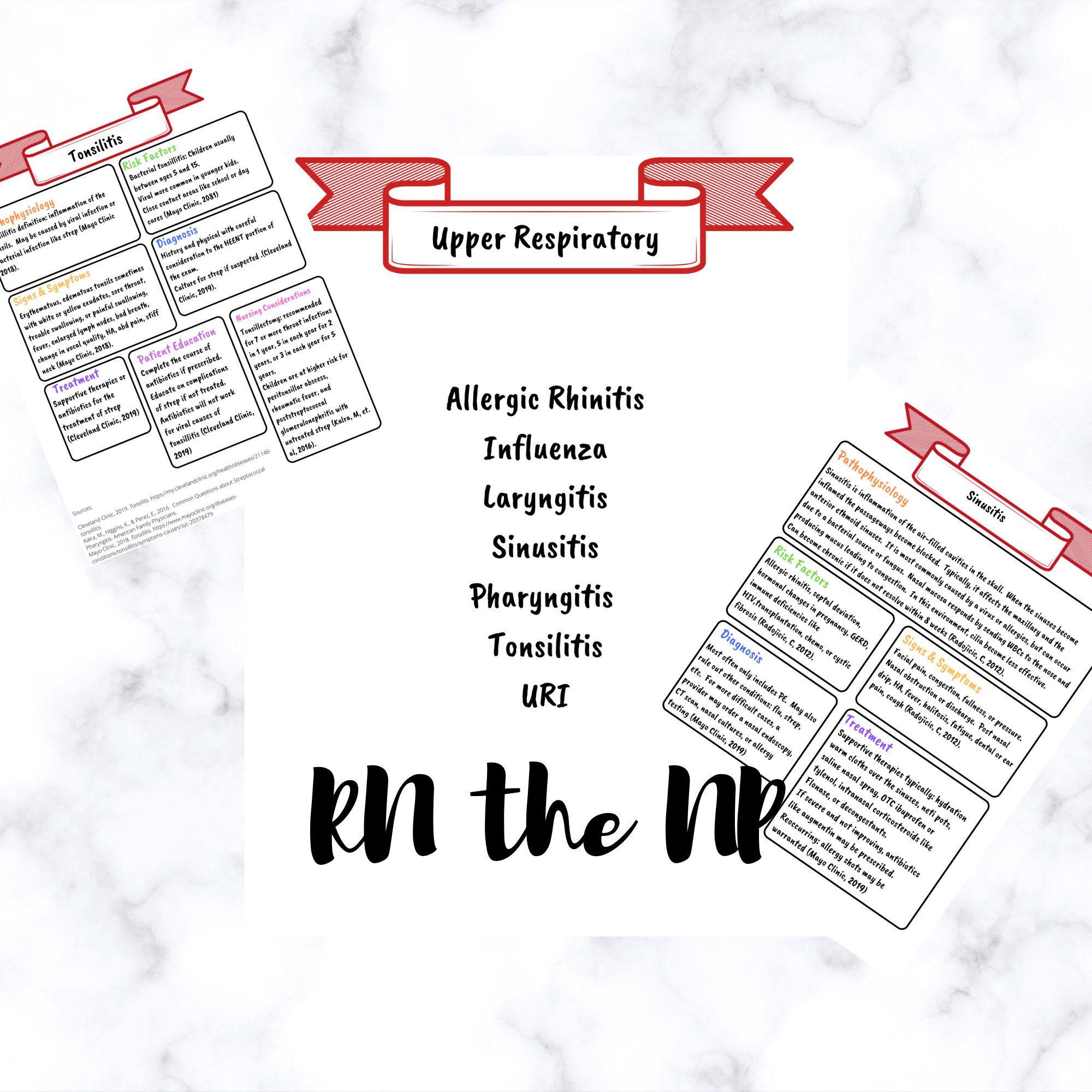 Upper Respiratory Bundle For Nursing Students By Rnthenp On Etsy Nursing Study Guide Nursing School Notes Nursing Students