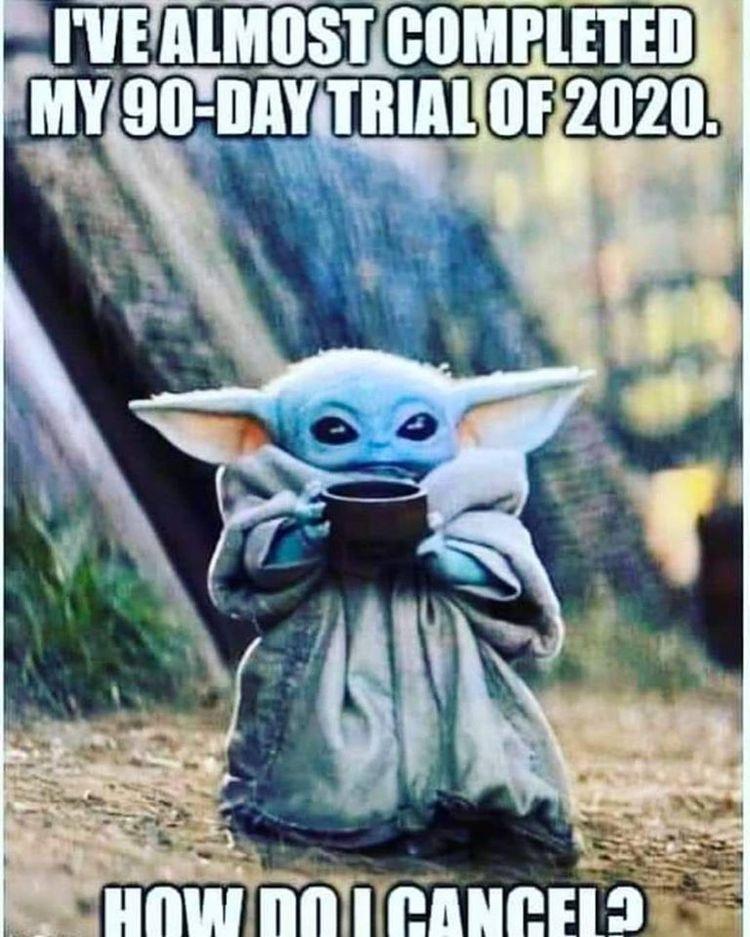 Pin By Michael D On We Re All Gonna Die Yoda Meme Yoda Funny Yoda Wallpaper