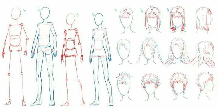 Male Female Anime Drawings Guy Drawing Drawing Anime Bodies